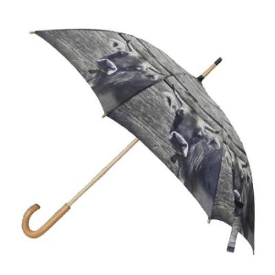 Cow umbrella